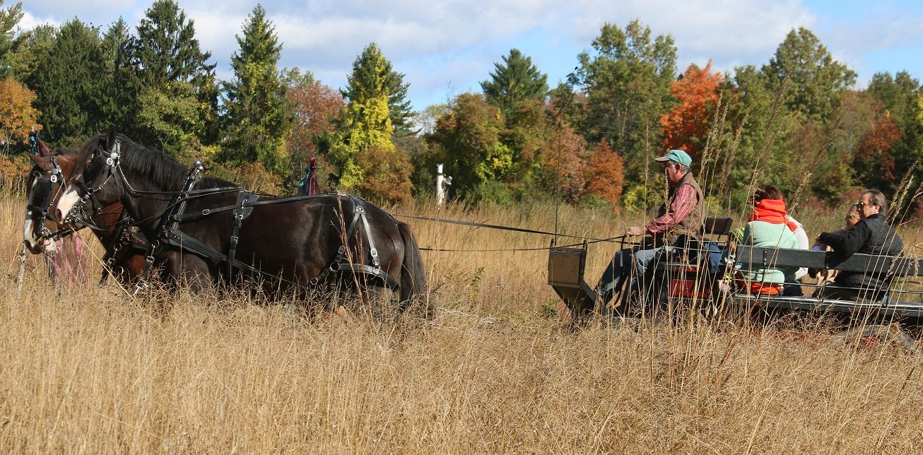 Old Fashioned Country Fair - Raritan Headwaters